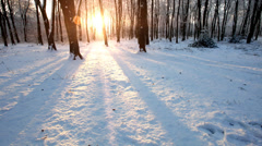 Time lapse of  snowy scene in a forest with sun setting and shining through the Stock Footage