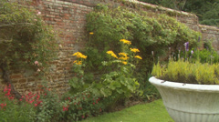 Relaxing within the peaceful environment of an English rose garden. High quality Stock Footage