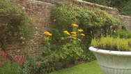 Stock Video Footage of Relaxing within the peaceful environment of an English rose garden. High quality