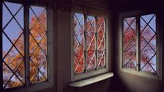 Autumn trees and windows Stock Footage