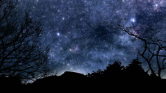 Beautiful timelapse animation of twinkling stars and planets moving across the Stock Footage