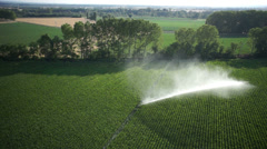 Stock Video Footage of Aerial of corn field irrigation system (pipes water stream complete view)