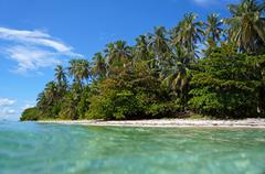 beach with beautiful tropical vegetation - stock photo