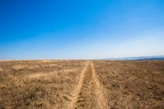 Dirt Road Tracks Blue Wilderness - stock photo