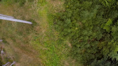 Flight over spruce forest Stock Footage