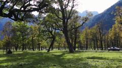 Grosser ahornboden, tirol, austria Stock Footage