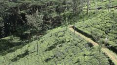 Sri Lanka coutryside Stock Footage