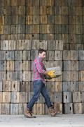Traditional wooden crates for packing vegetables. A man carrying an empty crate. Stock Photos