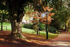 autumn park scene - stock photo