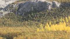 norwegian autumn landscape 1 - stock footage