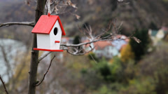 Bird House In A Tree Stock Footage