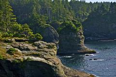 Northwest pacific shore cliffs Stock Photos