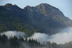 washington state olympic peninsula mountains - stock photo