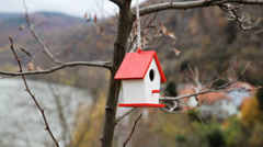 Small Bird House Stock Footage