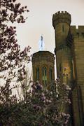 Smithsonian castle with magnolias  night washington dc Stock Photos