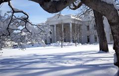 white house trees after snow pennsylvania ave washington dc - stock photo