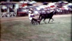 Harness racing Horse competition carriage races 1940s horse cart vintage Stock Footage