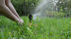 Gardener hands plug hose to watering sprinkler sprayer tool Stock Footage