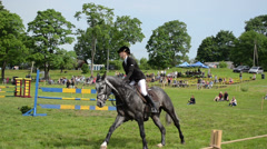 Woman rider with horse jump barriers in steeplechase horse race Stock Footage