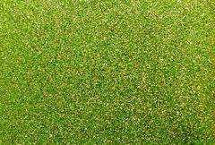 Green glittering background Stock Photos