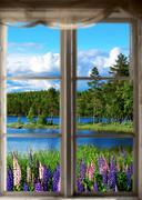Scandinavian summer landscape Stock Photos