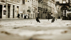 The Rynok Square in Lviv is a central square of the city of Lviv, Ukraine. Stock Footage