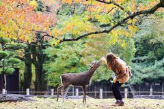 Nara is a major tourism destination Stock Photos