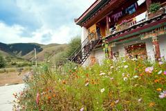 planting flowers tibetan dwellings - stock photo