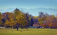 Fall in the city park, denver, colorado Stock Photos