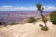 Stock Photo of geology of the grand canyon in arizona