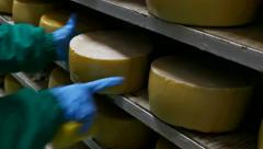 Hard yellow cheese Stock Footage