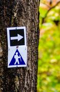 Stock Photo of hiking trail during autumn season