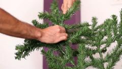 Opening a branch of a christmas tree Stock Footage