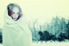christmas tales. female portrait with vintage stylization - stock photo