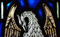 Stained glass raptor Stock Photos