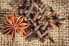 Traditional christmas spices - star anise and cloves Stock Photos