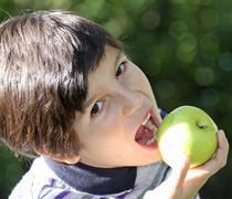 Kid eating a ripe apple green on a sunny day Stock Photos
