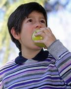 boy in striped wool sweater purple bite with hunger an apple - stock photo