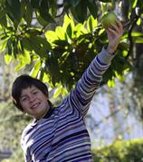 Smiling child with collects from a mature apple Stock Photos