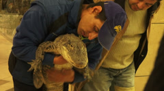 Circus man holding a young alligator, shopping mall, animal exhibition Stock Footage