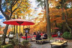Stock Photo of Beautiful maple season