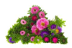 bouquet new england asters - stock photo