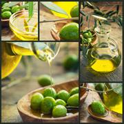 olives - stock illustration