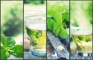 Mint tea collage Stock Illustration