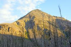 Mountain peak in the evening sunlight Stock Photos