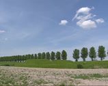 Stock Video Footage of Earth rampart in dike near Hoofddorp, The Netherlands + tilt down field