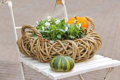 decorative basket of flowers and pumpkins on a chair - stock photo