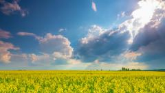 Rape field and dramatic sky, time-lapse - stock footage