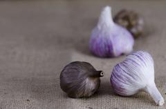 Stock Photo of garlic bulbs