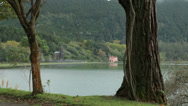 Stock Video Footage of furnas lake, san miguel island, azores, Portugal